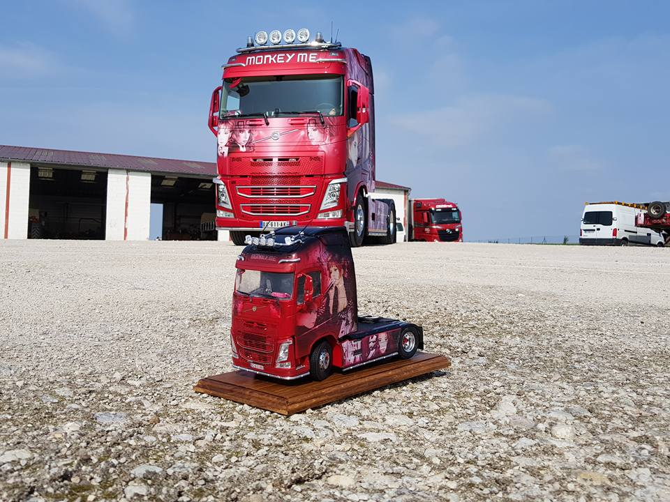 "Volvo FH4 ""Mylene Farmer, Monkey Me"". Dave Perret, France"